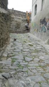 Camí de la Vall del Paradís - Fotografia: CEB